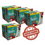 114 Couches Pampers Baby Dry Pants taille 6